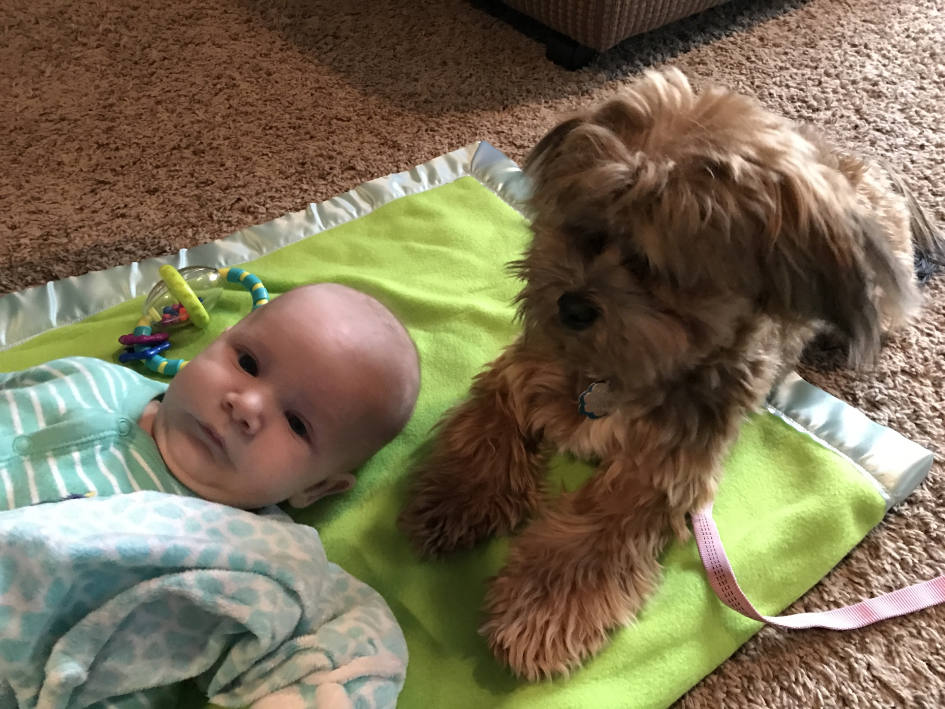 Denali loves babies