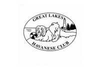 Great Lakes Havanese Club